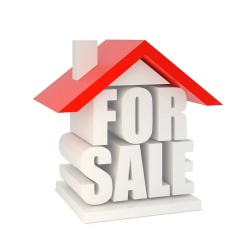 GrassRoots Financial FSBO Tips for Homeowners